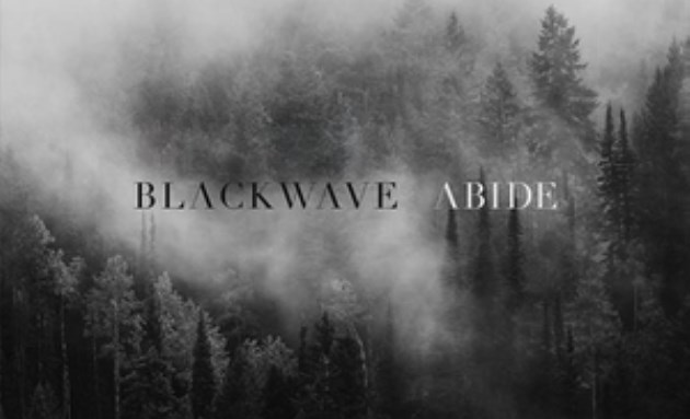 blackwave.